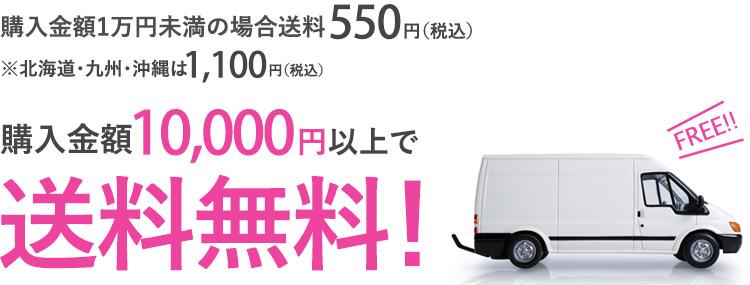 11,000円以上お買い上げで送料無料